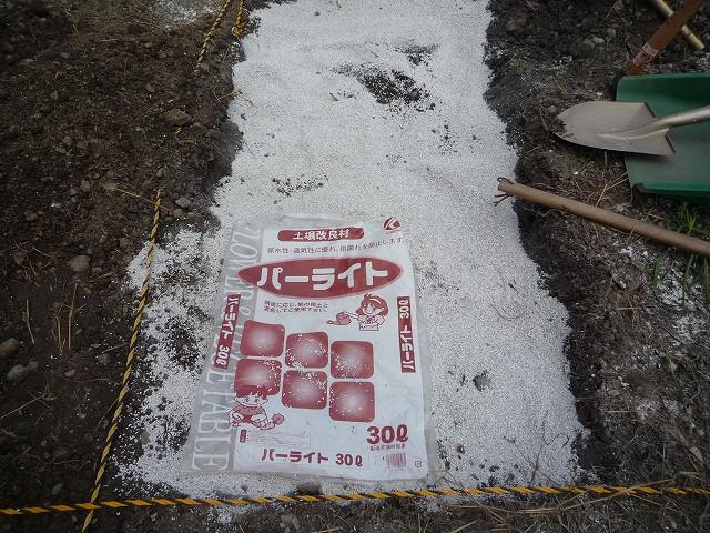 土壌改良にパーライト投入。