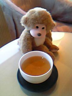 さるごんお茶1
