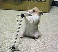 karaoke-s.jpg