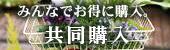 kyoudou.jpg