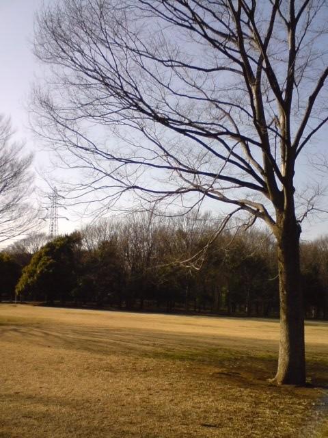 小金井公園-7