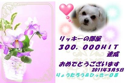 300Khit_ひっきー08さん