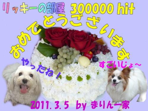 300Khit_まりんママさん
