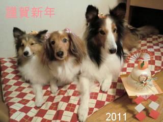2011年賀ラーまあママさん