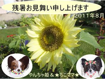 2011残暑お見舞い_☆ちこママ☆さん