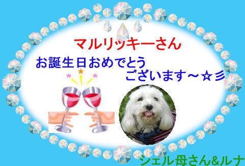 2011バースデーカード_お母さん