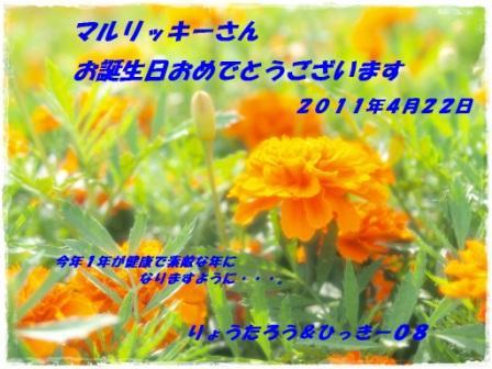 2011バースデーカード_ひっきー08さん