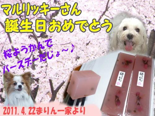 2011バースデーカード_まりんママさん