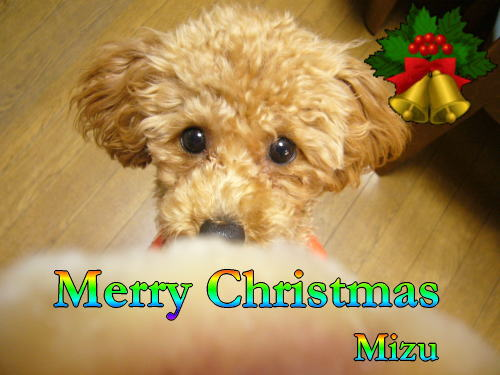 Mizuさん