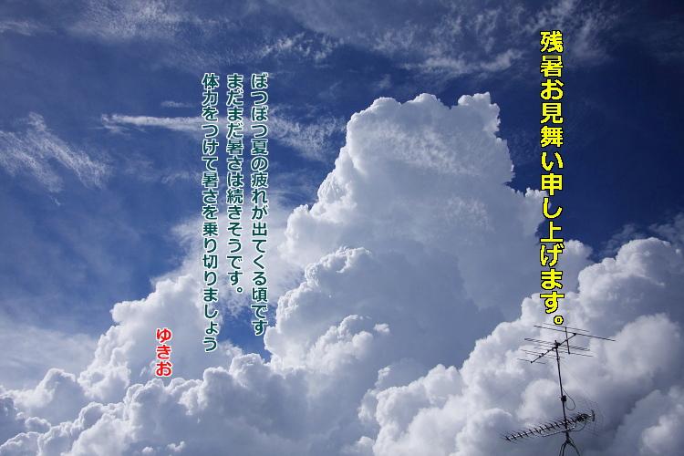 2010残暑お見舞いじじいさん
