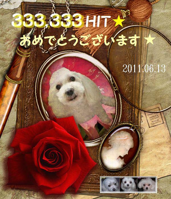 333333hit_ekubo19さん