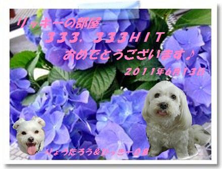 333333hit_ひっきー08さん