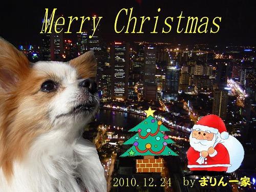 02010クリスマスまりんママさん