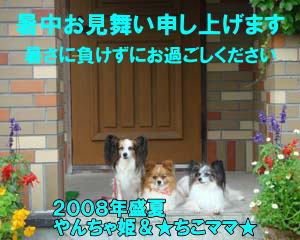 ☆ちこママ☆さん