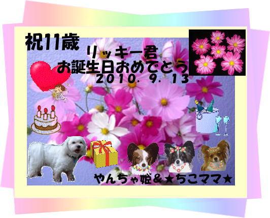リッキー11歳バースデーカード_☆ちこママ☆さん