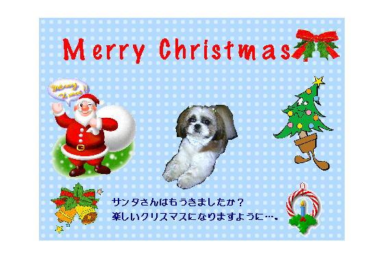 2010クリスマスカードcookieさん