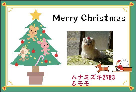 2010クリスマスカードハナミズキさん