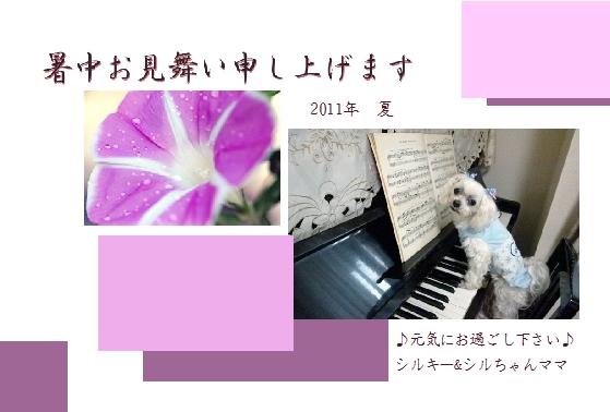 2011暑中見舞い_シルちゃんママさん