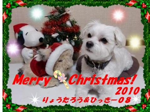 2010クリスマスカードひっきー08さん