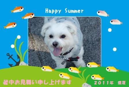 2011暑中見舞い_ひっきー08さん