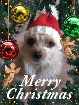 2011クリスマス_はなママさん