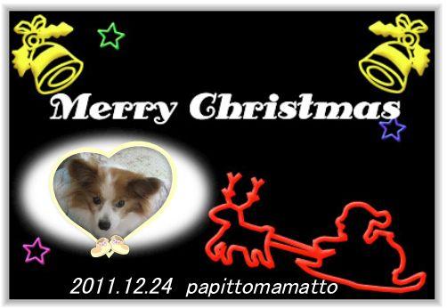 2011クリスマス_パピママ♪さん
