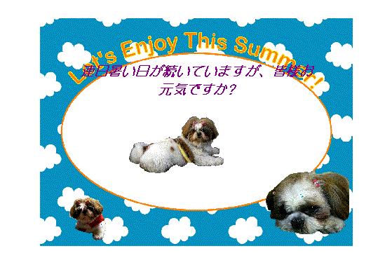 2010暑中見舞いCookie