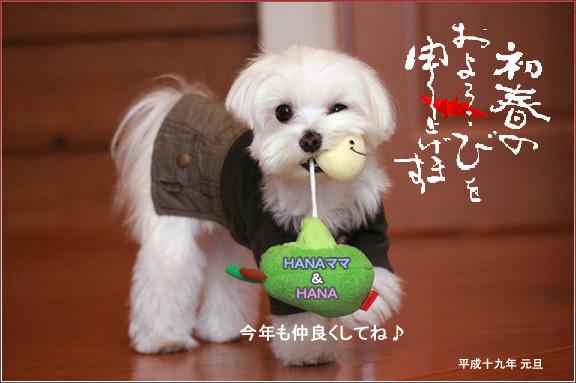 Hanaママさん