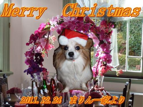 2011クリスマス_まりんママさん
