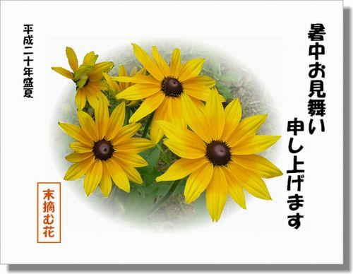 末摘む花さん