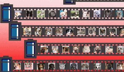動物保護啓発ポスター2