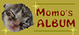 momo'album banner