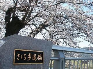 東日本大震災 213.jpg
