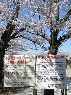 東日本大震災 227.jpg