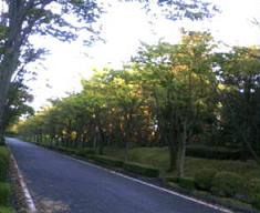 20071013161106.jpg