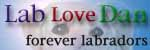 lab love Dan