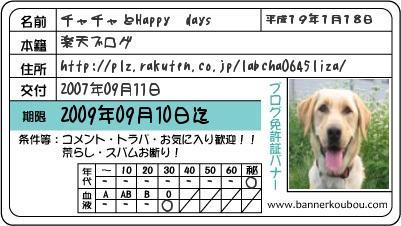 ブログ免許証