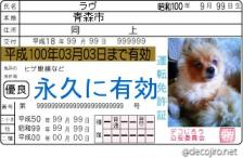 decojiro-20090412-002357.jpg