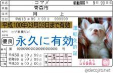 decojiro-20090412-002312.jpg