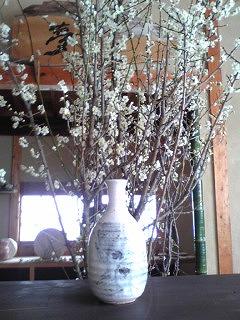 志野花瓶.jpg