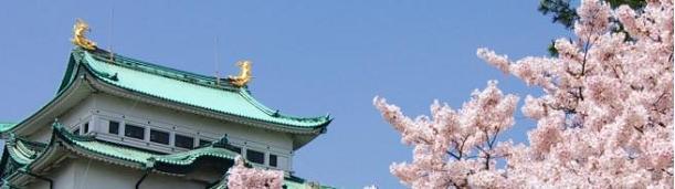 名古屋城 桜 ブログトップ.JPG