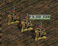 07.01今はなきシフ.JPG