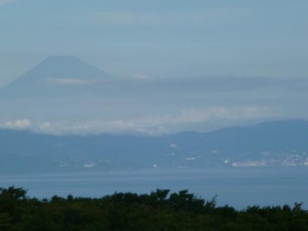 大島富士見
