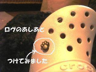 DSC05963-1.JPG