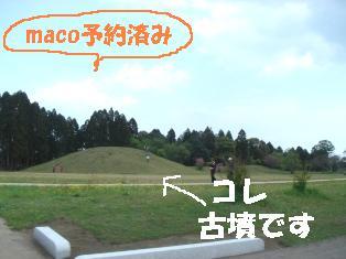 DSC05188-2.JPG