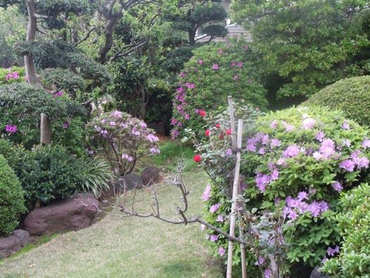 201105015月の庭