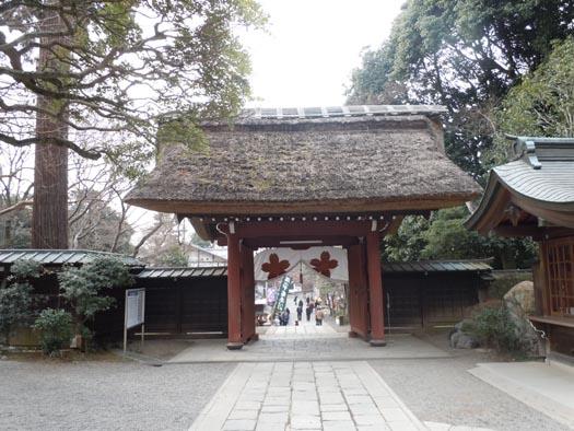 20110115深大寺(1)