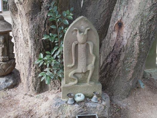 20110115深大寺(3)