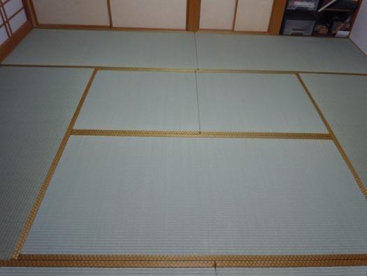 20110422我が家の青畳