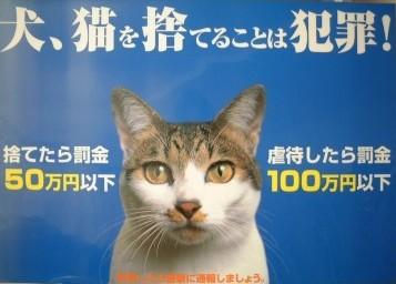 動物虐待禁止ポスター.jpg